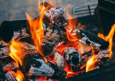 saisonartikel-grillkohle